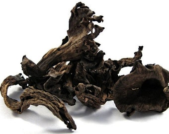DRIED BLACK TRUMPET Mushrooms Organic, 4 ounce Tub Clean Storable Food