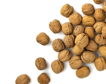 BULK ENGLISH WALNUTS; Kosher, Un-Shelled,or Organic Shelled, Pieces Fresh, Natural, Raw, Unsalted, Storable