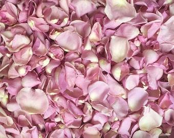 Scented WEDDING TOSS PETALS Rose Mauve Fresh Freeze Dried, Bio-degradable, Real Rose Petals, Wedding Color Match, Bulk Orders