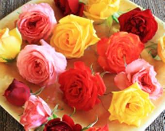 FRESH EDIBLE ROSES. Organic Flower, Cake Toppers, Edible Flowers, Pastels, 25 Assortment Edible Flower