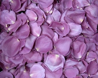 WEDDING TOSS PETALS Lilac Purple Fresh Freeze Dried, Popular Colors, Bio-degradable, Real Rose Petals, Wedding Color Match, Bulk Orders