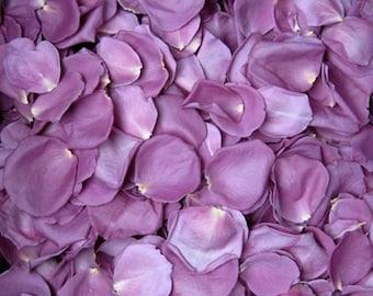 Freeze,Dried,Rose,Petals