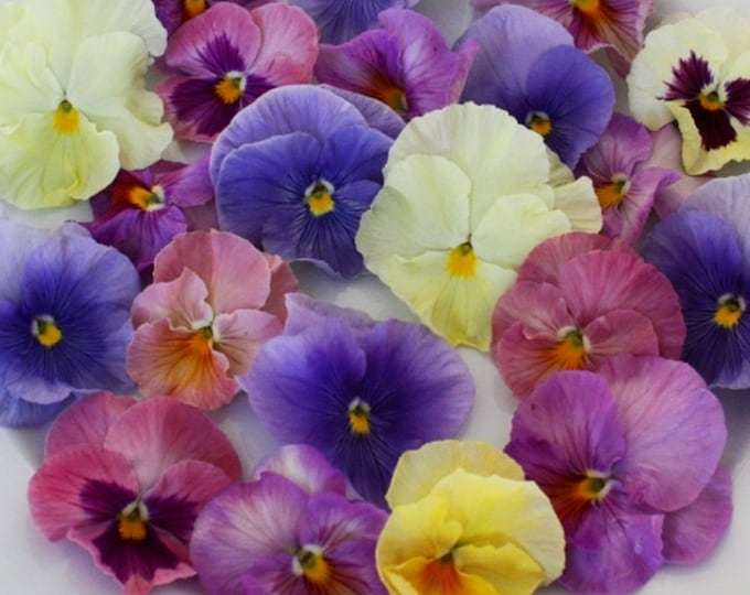 Featured listing image: EDIBLE FLOWERS PANSIES Soft Color Collection Fresh, Edible Flower, Salads, Baking, Drink Toppers, Cupcake Toppers, Cake Decorations 35