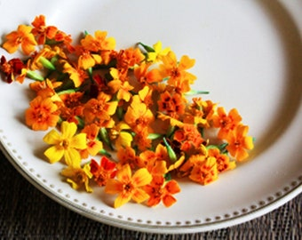 200 EDIBLE MARIGOLDS: Micro MARIGOLDS, - Edible Flowers/ Full Blooms /Micro size Blooms Candied/ Edible Flowers