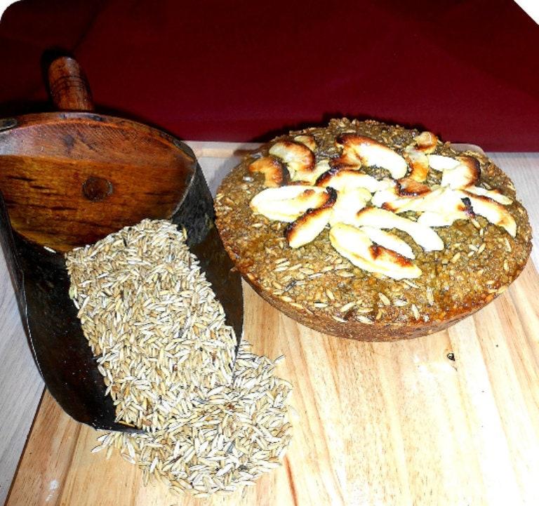 Horse Stud Muffin Apple Cake Treats Meal Treats Cake Meal