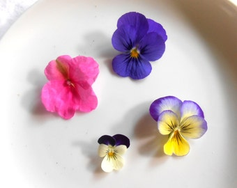 14 Crystallized Dark Purple Violas Cake Toppers, Edible Flowers