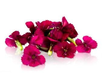 EDIBLE FLOWERS DIANTHUS, Miniature Real Organic Flowers, Bulk, Magenta, Red, Pink  Salad Garnish, Drinks, Citrus Taste 200