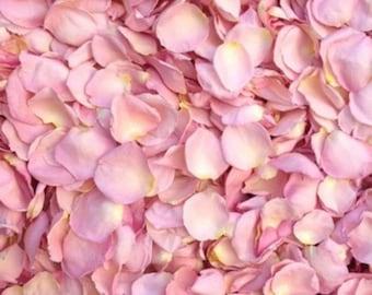 Scented WEDDING TOSS PETALS Pink Fresh Freeze Dried, Popular Colors, Bio-degradable, Real Rose Petals, Wedding Color Match, Bulk Orders