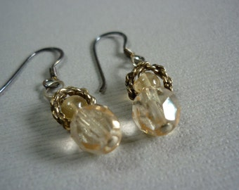 Encircled crystal earrings