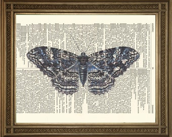 "DICTIONARY ART  PRINT: 'Blue Moth' Vintage Art Illustration Design (size 8 x 10"")"