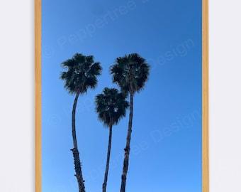 Palm Trees Photo Print - Unframed - Original Modern Photography Image