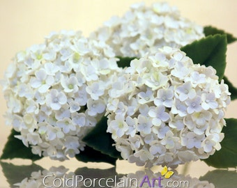 Hydrangeas - ColdPorcelainArt - Made to order