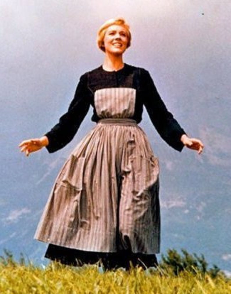 Sound of Music Novice costume for adults image 0