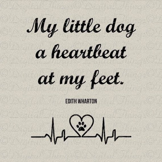 My Little Dog Art Edith Wharton Quote Typography Wall Decor Etsy
