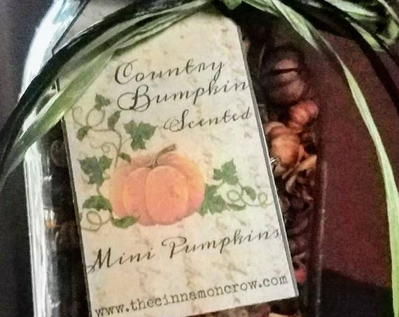Fall  scented mini pumpkins