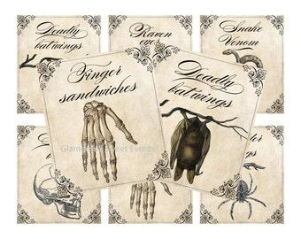 INSTANT DOWNLOAD, Printable Halloween Treat Labels, Halloween Jar Labels