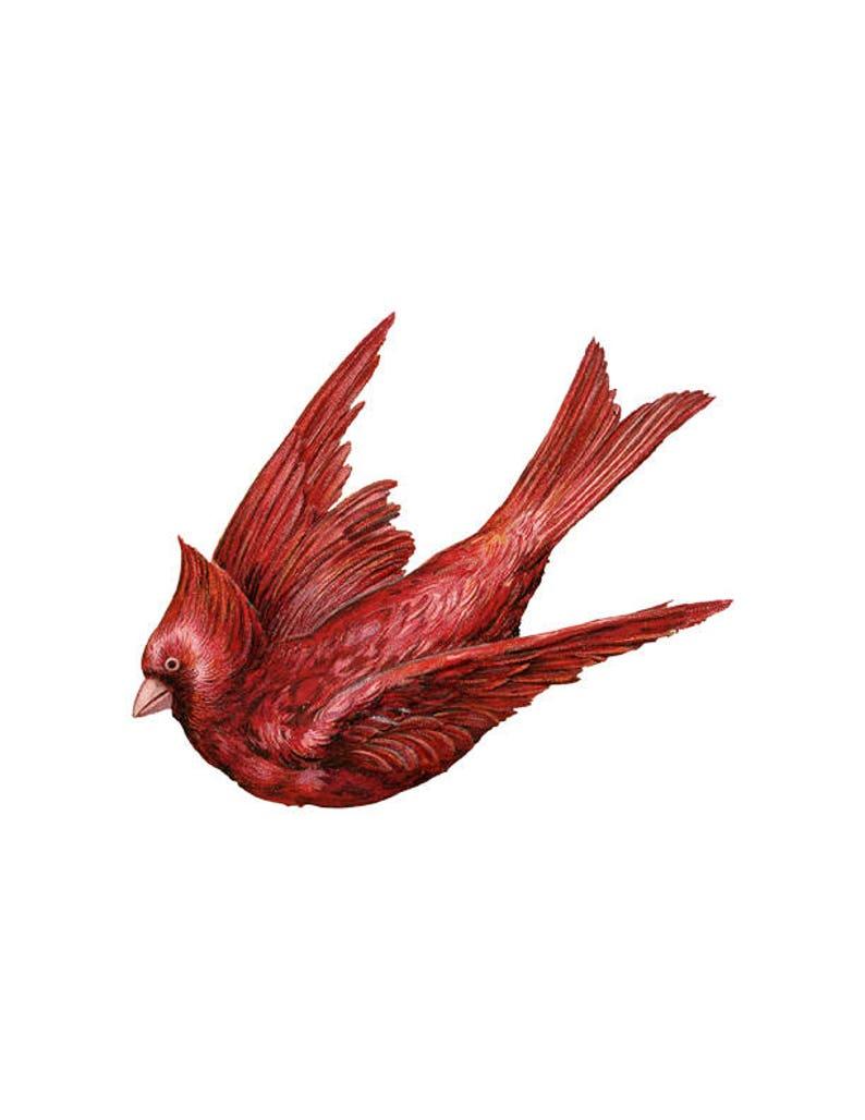 Flying Cardinale Png Uccello Rosso Clip Art Sfondo Trasparente Etsy