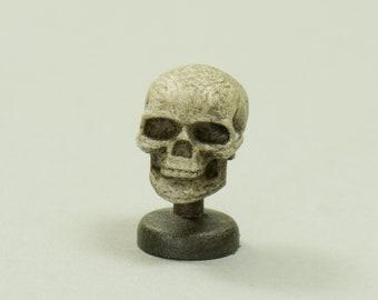 Skeleton Head - Dollhouse Miniature - 1:12 scale Artisan Handmade