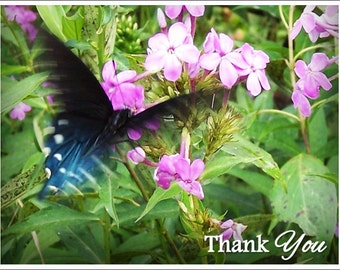 Personalized Butterfly Note Cards with Envelopes, Butterfly in Motion in Wildflowers