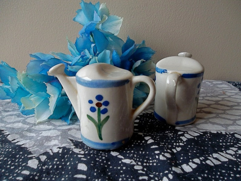 Salt and Pepper Shakers WATERING CANS Vintage Mid Century 50s Collectible Set with Blue Flowers Gardening Gift