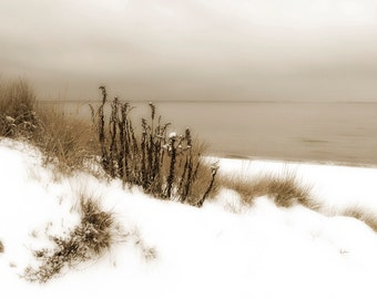 Winter snow beach scene photograph sepia fine art photography fpoe home decor
