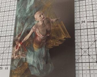 Foto - Acrylglas - Birke