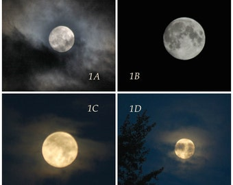 Harvest Moon Selection, Choice of Images, September Full Moon photo collection, custom moon photograph, personal moon phase photo