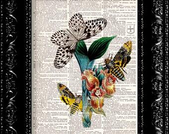 Vintage Dictionary Print Vintage Book Print Page Art Upcycled Vintage Book Art