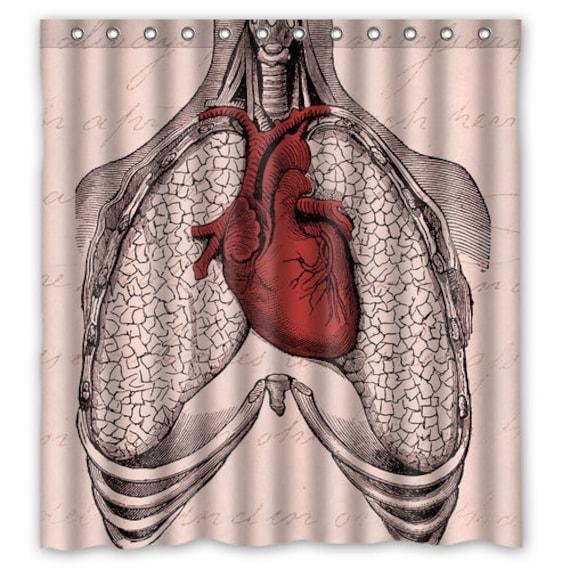 Anatomy Heart Lungs Shower Curtain Anatomy Heart Shower Etsy
