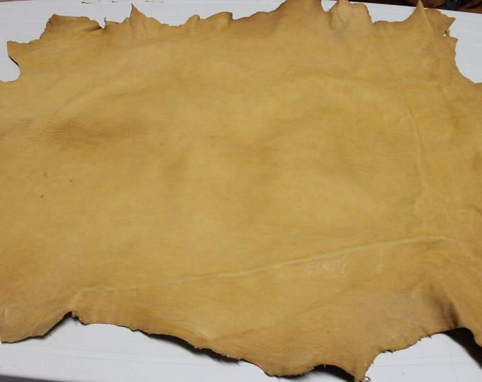 Italian Vegetable Tan Goatskin Goat leather skin skins hide hides WASHED Rustic MUSTARDY AMBER 7sqf #A2412