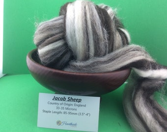 Jacob Roving, Multi Colored Jacob Top. Humbug Jacob Top, 100 grams, great for spinning, felting or weaving, all natural fiber.