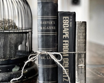 Antique Farmhouse Collection Harry Potter Inspired