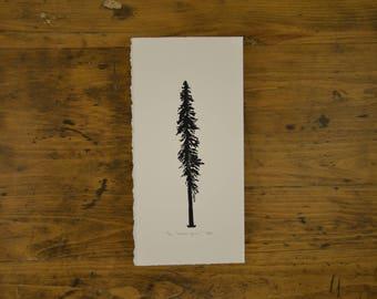 White Spruce Linocut