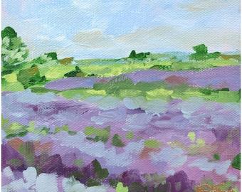 Lavender Fields No. 2 Fine Art Print On Canvas