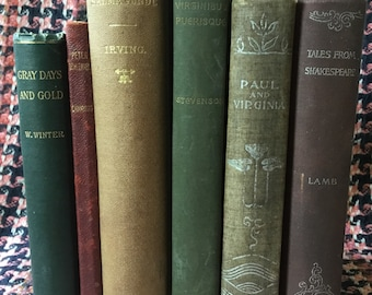 LITTLE BOOKS 4 NOOKS Lot 6 Library Decorator Old Tomes