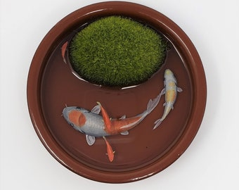 Koi Fish in a Brown Bowl