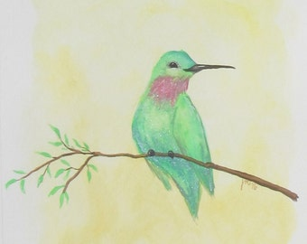 "8"" x 10"" Art Print  -Happy Anna's Hummingbird-"