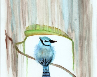 "8"" x 10"" Art Print -Blue Jay in the Rain-"