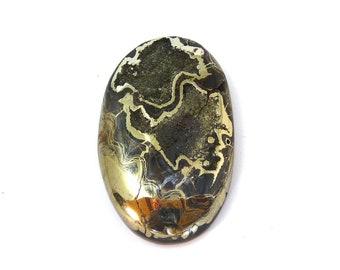 Natural Ammonite Fossil Pyrite Designer Cabochon Gemstone 34.2x54.2x9.0 mm Free Shipping