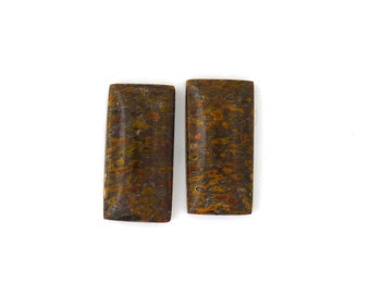 Dinosaur Bone Designer Cabochon Gemstone 12.3x24.5x4.8 mm Free Shipping Free Returns