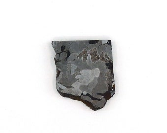 Seymchan Meteorite Slice 28.8x34.6x4.9 mm Free Shipping Free Returns