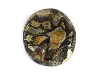 Natural Ammonite Fossil Pyrite Designer Cabochon Gemstone Free Shipping 41.8x47.1x8.5 mm