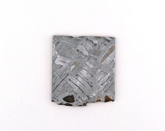 Seymchan Meteorite Slice 37.6x41.8x3.0 mm Free Shipping Free Returns