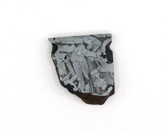 Seymchan Meteorite Slice 27.1x30.5x5.0 mm Free Shipping Free Returns