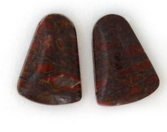 Dinosaur Bone Designer Cabochon Gemstone Matched Pair 12.4x17.5x4.3 mm Free Shipping Free Returns