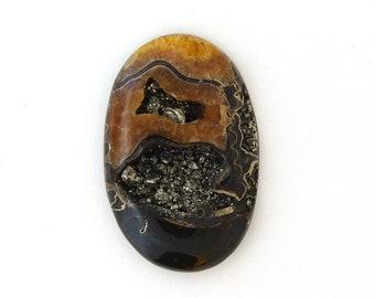 Natural Ammonite Fossil Pyrite Designer Cabochon 36.0x55.0x8.2 mm Free Shipping Free Returns
