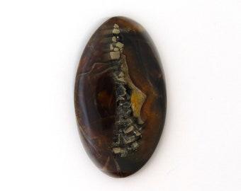 Natural Ammonite Fossil Pyrite Designer Cabochon 35.2x61.4x6.8 mm Free Shipping Free Returns