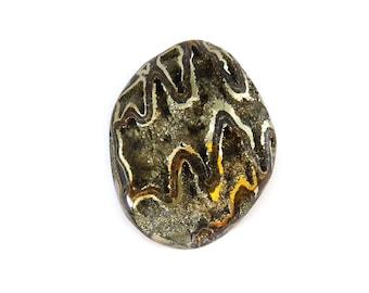 Fossil Ammonite with Natural Pyrite Druzy Designer Cabochon Gemstone 34.9x44.9x11.8 mm Free Shipping amm0011