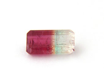 Pink Bicolor Tourmaline Faceted Gemstone Free Shipping Free Returns 8.3x15.7x6.4 mm