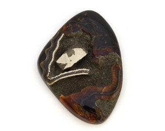 Ammonite Fossil Pyrite Designer Cabochon Gemstone Free Shipping Free Returns 42.2x59.5x7.7 mm